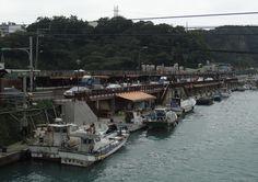 和平島觀光魚市大街│Taiwan Travel Guide
