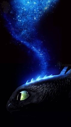 Toothless a badass toothless Toothless And Stitch, Toothless Dragon, Hiccup And Toothless, Httyd Dragons, Dreamworks Dragons, Cute Dragons, How To Train Dragon, How To Train Your, Croque Mou
