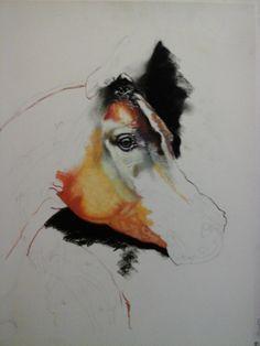 estudio de cabeza de caballo al pastel