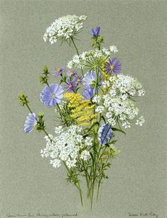 Compass Music and Arts Center - 'Prelude to Spring: Botanical Art in Vermont' Botanical Flowers, Beaded Flowers, Botanical Prints, Botanical Drawings, Botanical Illustration, Hand Embroidery Designs, Embroidery Art, Pretty Flowers, Wild Flowers