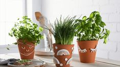 Fimo-massoilla voit koristella saviruukkuja. Ihana lahjaidea! Diy Fimo, Polymer Clay, Clay Pots, Deco, Upcycle, Planter Pots, Photos, Instagram, Pictures