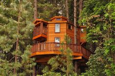 #treehousemovement ❤️ or ? ©treehouseculture Follow for more Tree Houses posted daily