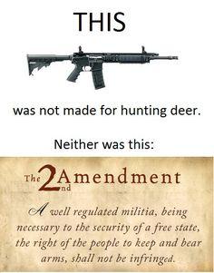 Pro gun control satire essay