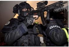 16 Best Gign Images Rainbow 6 Seige Tom Clancy S Rainbow