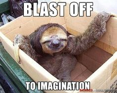 Ok, I know it's not a dog, but I really love sloths too!!  Maybe I should start a sloth page......