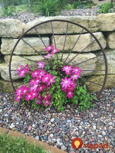 Nemusíte utrácať za drahé kvetináče: Úžasné nápady, ako pestovať kvety na vašej záhrade!