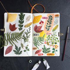 Leaf. Botanical No. 4. #carolyngavin #carolyngavinsketchbook #leaves #botanicalillustration #botanicalart #botanical #watercolor #botanicalgarden