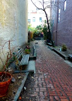 Hidden Spots in NYC - Septaguismo Park