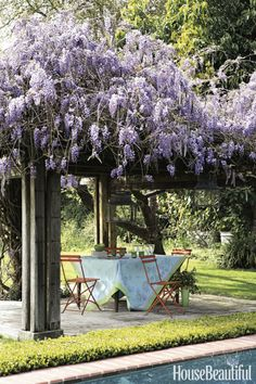 The only thing more heavenly than thiscottage's pool is thewisteria growing beside it. Shading a group of bistro chairs, the pergola providesthe perfect lunch spot.