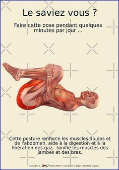 « Planches Musculo-squelettique des positions de Yoga - N°24 » par rodolphe Augusto | Redbubble