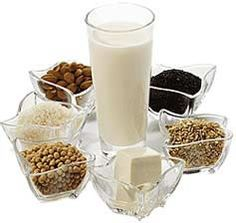 leches vegetales facilísimo