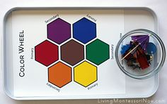 Color Matching Tray with Small Objects