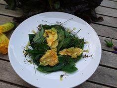 Tu-Ren-Shen   Salad