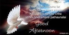 Good noon Friends