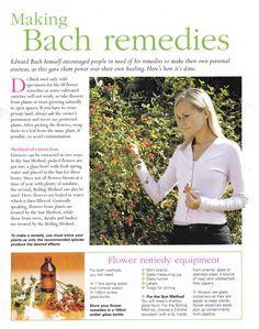 Making Bach remedies