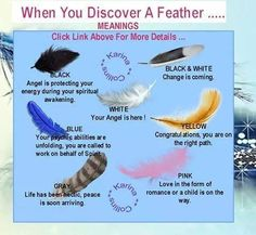 When You Discover a Feather...... I don't believe this but it is cute..
