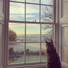 a country home – christmas with charlotte anne fidler in england