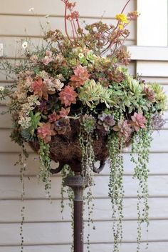 A recycled lamp base and hanging planter basket create a unique garden pedestal. Lots of other examples of recycled materials in the garden at this site.
