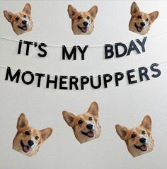 Birthday Banner for Dogs - It's My BDAY Motherpuppers - - Birthday Banner for Dogs – It's My BDAY Motherpuppers Dog Training Recall Groteske Hundekostüme Bulldogge Dog First Birthday, Puppy Birthday Parties, Puppy Party, Dog Parties, Party For Dogs, It's My Birthday, Birthday Banners, Birthday Ideas For Dogs, Dog Birthday Quotes