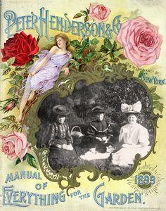 1899hendersonframe1_wingsofwhimsy-kopi.jpg (730×928)