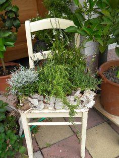 Die 50 Besten Bilder Von Stuhl Bepflanzen Chair Planter Window