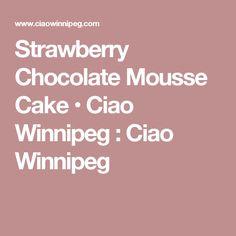 Strawberry Chocolate Mousse Cake • Ciao Winnipeg : Ciao Winnipeg