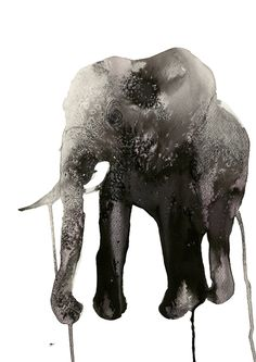 elephant illustration by Stina Persson Art And Illustration, Illustration Design Graphique, Elephant Illustration, Art Graphique, Illustrations Posters, Illustration Animals, Elephant Love, Elephant Art, Elephant Poster