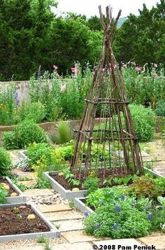 How Does Your Garden Grow? | Everyday Living