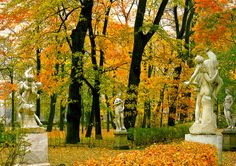 Fall in the majestic Summer Garden in St. Petersburg, Russia.  One of my favorite spots!