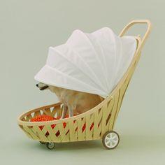伊東豊雄×柴犬。  「犬のための建築」(http://architecturefordogs.com  )。【CasaBRUTUS編集長 松原亨】  http://lexus.jp/cp/10editors/contents/casabrutus/index.html  ※掲載写真の権利及び管理責任は各編集部にあります。LEXUS pinterestに投稿されたコメントは、LEXUSの基準により取り下げる場合があります。