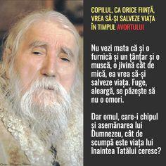 Viața începe la concepție Salvia, Einstein, Quotes, Folklore, Quotations, Sage, Quote, Shut Up Quotes