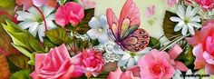 Beautiful Butterfly Facebook Cover