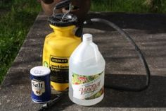 DIY weed killer. Add dish deterg to recipe for added effectiveness.....use on sunny days