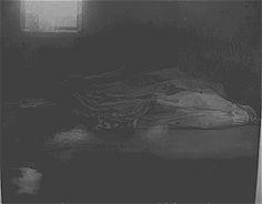 Resultado de imagen de ipatiev house cellar room