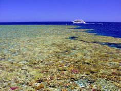 Santa Claus Travel Egypt  Contact us now: info@santaclaustravel.com  Sharm El-Sheikh, Red Sea, Egypt
