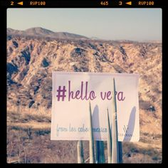 #HelloVera from #LosCabos #Mexico