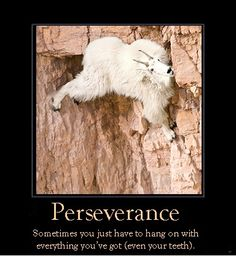 Perseverance, love, devotion makes it very easy