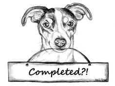 """Completed? Jack Russell Terrier Amy with the sign """"Completed?"""""""