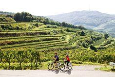 Von der Kaiser-Tour bis zur Tuniberg-Runde: Eine Auswahl an Radtouren #Kaiserstuhl: www.hikeandbike.de