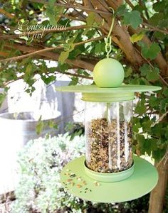 Recycled Bottle birdfeeder (instead of flat board on bottom, use something a bit more bowl like
