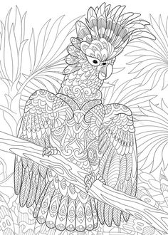 Stock vector of 'Stylized cartoon cockatoo parrot in tropical forest jungle. Freehand sketch for adult anti stress coloring book page with doodle and zentangle elements.'