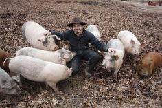The Happy Pig Farmer.