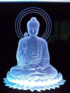 """""""The point of the spiritual revolution is not to become a good Buddhist, but to become a wise and compassionate human being, to awaken from our life of complacency and ignorance and to be a buddha."""" ~ Noah Levine (scheduled via http://www.tailwindapp.com?utm_source=pinterest&utm_medium=twpin&utm_content=post159285037&utm_campaign=scheduler_attribution)"""
