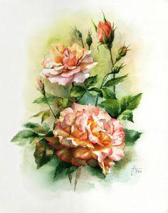 Gallery.ru / Фото #6 - Но больше всех люблю, конечно, розу... - Anneta2012