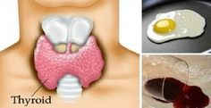 6 HIDDEN HOUSEHOLD TOXINS THAT ARE AFFECTING YOUR METABOLISM, THYROID GLANDS AND BELLY FAT