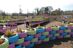 Upcycled tyre wall at Ashtree Garden Centre, painted in pastels and planted into with spring bedding plants