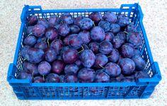 Melyik szilvafajtát válasszam? Plum, Fruit, Food, Hoods, Meals