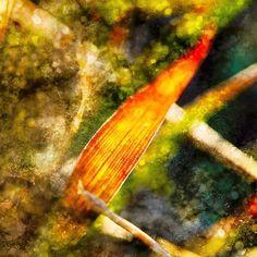 "İmkansız değil 🍀 ""Summer Snow"" Boyut: 240 x 240cm • 10 Adet ile limitli Dijital Fine Art Baskı • Detaylı bilgi ve sipariş için 📩➡️burcu@burcukilicer.com #artrealism #featureart #artists #artfeature #abstractart #fineart #artsy #contemporaryart #artblog #abstract #abstractart #abstractartist #abstractarts #abstractexpressionist #artwork #wallart #onlineartgallery #onlineartsales #color #colour #creative #photography #photoofday #photoftheday #myart #instaartwork #instaartist…"
