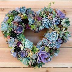 """""""Perfect for valentines day @gardenanswer #succulent #succulents #succulentlove #succulentlover #succulove #succulenthoarder #succulentporn…"""""""