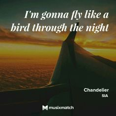 Sia - Chandelier Musixmatch LyricsCard